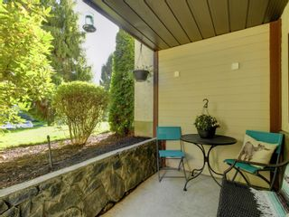 Photo 18: 207 75 W Gorge Rd in : SW Gorge Condo for sale (Saanich West)  : MLS®# 858739