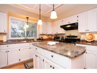Photo 10: 13568 N 60A Avenue in Surrey: Panorama Ridge House for sale : MLS®# F1432245