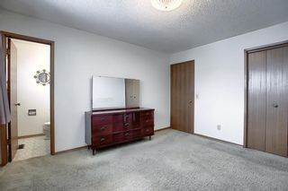 Photo 11: 4323 49 Street NE in Calgary: Whitehorn Detached for sale : MLS®# A1043612