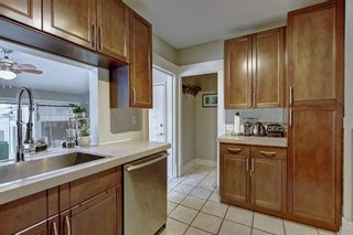 Photo 10: 3212 14 Street SW in Calgary: Upper Mount Royal Detached for sale : MLS®# A1127945