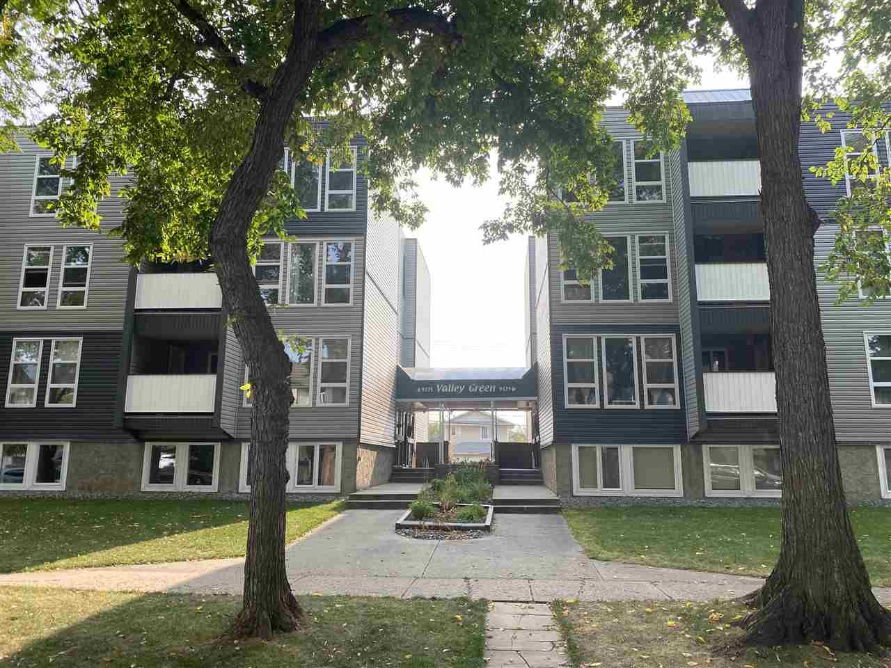 Main Photo: 205 9329 104 Avenue in Edmonton: Zone 13 Condo for sale : MLS®# E4214862