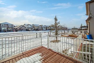 Photo 14: 12 Skyview Springs Crescent NE in Calgary: Skyview Ranch Detached for sale : MLS®# A1067284