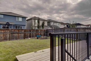 Photo 31: 38 AUBURN SPRINGS Close SE in Calgary: Auburn Bay Detached for sale : MLS®# C4203889
