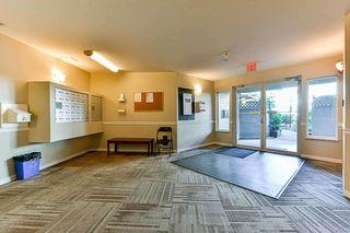 "Photo 3: 307 12130 80 Avenue in Surrey: West Newton Condo for sale in ""LA COSTA GREEN"" : MLS®# R2341447"