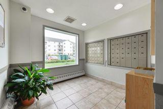 Photo 32: 214 4700 43 Avenue: Stony Plain Condo for sale : MLS®# E4255749