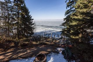 Photo 42: 410 4 Street: Rural Wetaskiwin County House for sale : MLS®# E4239673