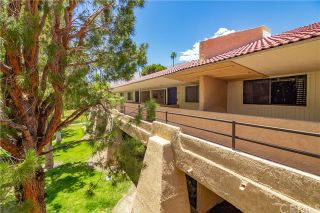 Photo 7: Condo for sale : 1 bedrooms : 701 N Los Felices Circle #213 in Palm Springs