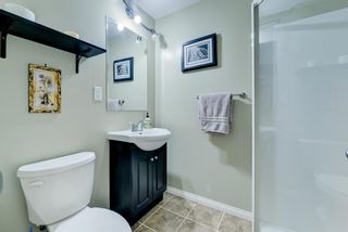 Photo 26: 368 Copperstone Grove SE in Calgary: Copperfield Detached for sale : MLS®# A1084399