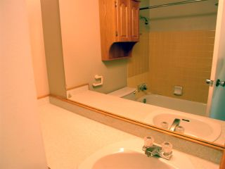 """Photo 11: 210 12096 222 Street in Maple Ridge: West Central Condo for sale in """"CANUCK PLAZA"""" : MLS®# R2531266"""