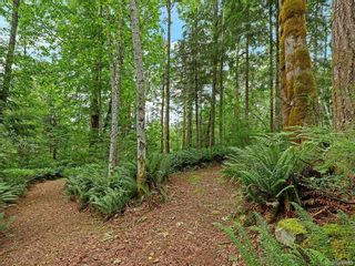 Photo 42: Lot 2 Eagles Dr in : CV Courtenay North Land for sale (Comox Valley)  : MLS®# 869395