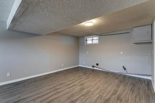Photo 35: 3812 49 Street NE in Calgary: Whitehorn Detached for sale : MLS®# A1054455