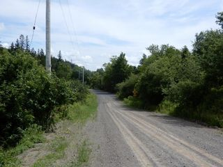 Photo 13: 299 New Lairg Road in New Lairg: 108-Rural Pictou County Vacant Land for sale (Northern Region)  : MLS®# 202117815