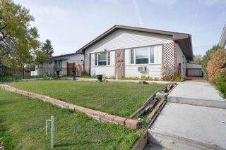 Photo 3: 3307 39 Street SE in Calgary: Dover Detached for sale : MLS®# A1148179