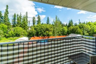 Photo 33: 5451 HEYER Road in Prince George: Haldi House for sale (PG City South (Zone 74))  : MLS®# R2605404