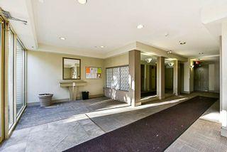 Photo 6: 217 15210 GUILDFORD DRIVE in Surrey: Guildford Condo for sale (North Surrey)  : MLS®# R2232822