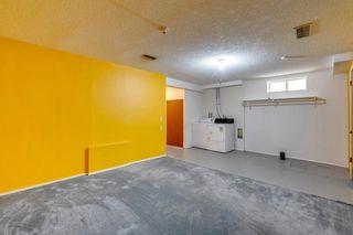 Photo 36: 924 Mckinnon Drive NE in Calgary: Mayland Heights Semi Detached for sale : MLS®# A1122625