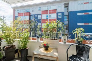 """Photo 16: 202 12096 222 Street in Maple Ridge: West Central Condo for sale in """"CANUCK PLAZA"""" : MLS®# R2591057"""