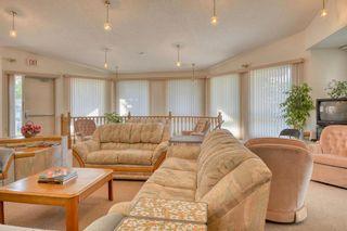 Photo 45: 124 Deer Ridge Close SE in Calgary: Deer Ridge Semi Detached for sale : MLS®# A1129488