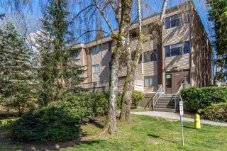 "Photo 1: 32 2434 WILSON Avenue in Port Coquitlam: Central Pt Coquitlam Condo for sale in ""ORCHARD VALLEY"" : MLS®# R2379250"