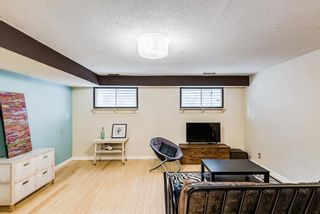 Photo 18: 1028 21 Avenue SE in Calgary: Ramsay Detached for sale : MLS®# A1116791