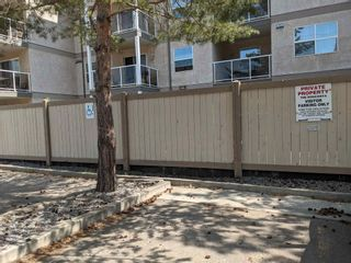 Photo 23: 401 12838 65 Street in Edmonton: Zone 02 Condo for sale : MLS®# E4253949