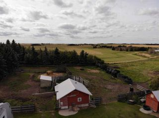 Photo 11: 43462 Range Road 150: Killam Land Commercial for sale : MLS®# E4210670