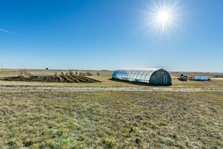 Photo 31: 272159 338 Avenue E: Rural Foothills County Detached for sale : MLS®# A1151839