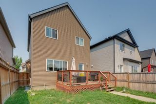 Photo 21: 418 Copperpond Boulevard SE in Calgary: Copperfield Detached for sale : MLS®# A1129824