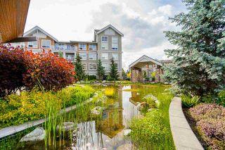 """Photo 36: 207 6490 194 Street in Surrey: Clayton Condo for sale in """"Waterstone- Esplanade Grande"""" (Cloverdale)  : MLS®# R2581098"""