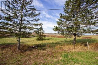 Photo 4: Lot Cape RD in Dorchester: Vacant Land for sale : MLS®# M131566