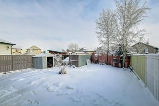 Photo 41: 239 SADDLEMEAD Road NE in Calgary: Saddle Ridge Detached for sale : MLS®# C4279947