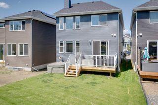 Photo 41: 383 STOUT Lane: Leduc House for sale : MLS®# E4251194