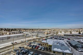 Photo 17: 711 8710 HORTON Road SW in Calgary: Haysboro Apartment for sale : MLS®# A1071641