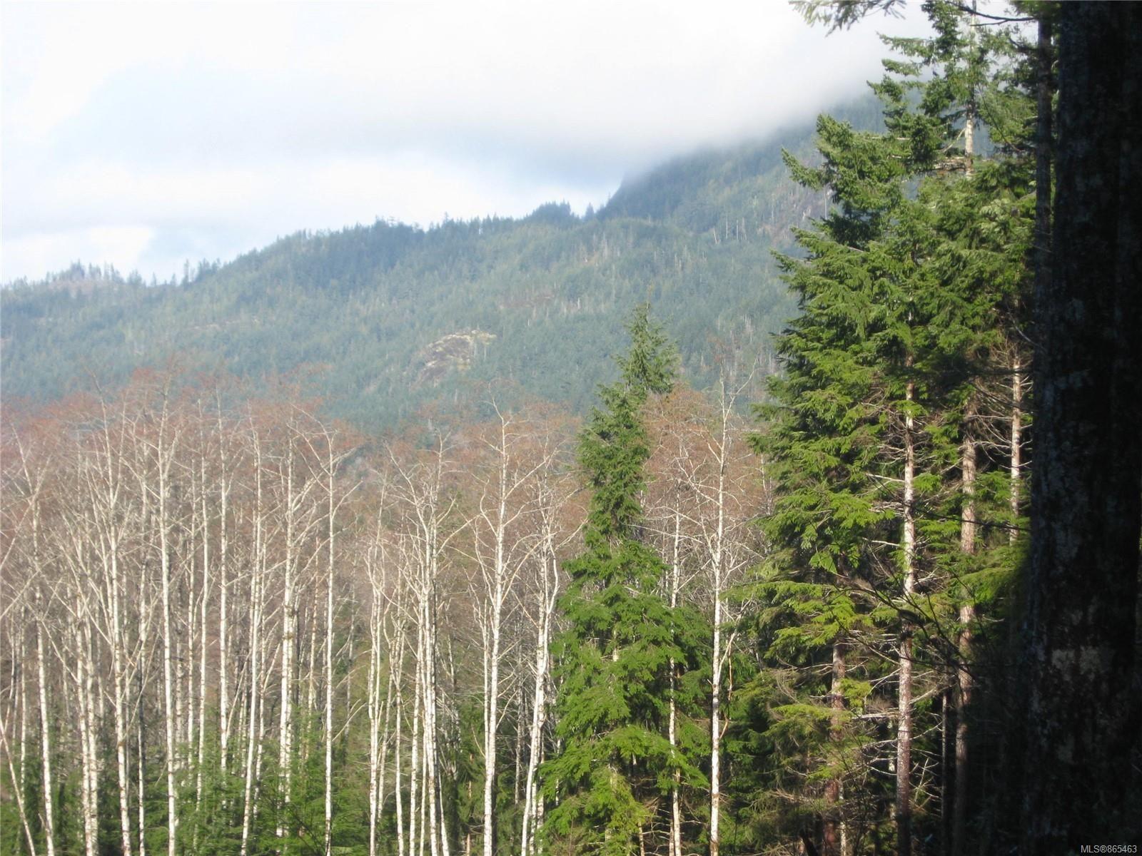 Photo 8: Photos: 1230 Cottonwood Rd in : NI Kelsey Bay/Sayward Land for sale (North Island)  : MLS®# 865463