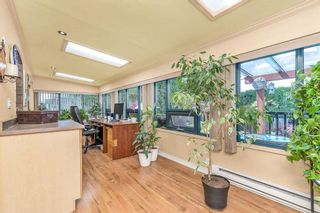 Photo 14: 12179 YORK Street in Maple Ridge: West Central House for sale : MLS®# R2584349