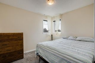 Photo 18: 87 Silver Creek Boulevard NW: Airdrie Detached for sale : MLS®# A1137823