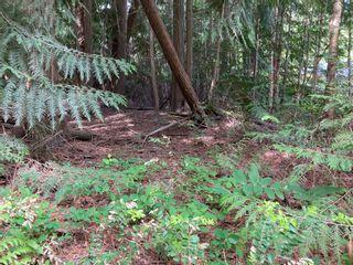 Photo 13: Lot 51 Forest Dr.: Blind Bay Land Only for sale (Shuswap)  : MLS®# 10232622