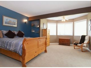 """Photo 12: 21341 87B Avenue in Langley: Walnut Grove House for sale in """"Forest Hills"""" : MLS®# F1407480"""