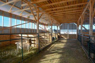 Photo 13: 13652 217 Road in Fort St. John: Fort St. John - Rural E 100th Manufactured Home for sale (Fort St. John (Zone 60))  : MLS®# R2350184