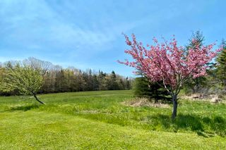 Photo 29: 236 Princes Inlet in Martins Brook: 405-Lunenburg County Residential for sale (South Shore)  : MLS®# 202112615