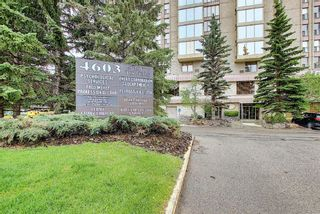 Photo 6: 302 4603 Varsity Drive NW in Calgary: Varsity Apartment for sale : MLS®# A1117877