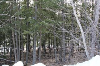 Photo 7: 33 2481 Squilax Anglemont Road in Lee Creek: Land Only for sale : MLS®# 10077079