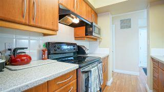 Photo 13: 501 10130 114 Street in Edmonton: Zone 12 Condo for sale : MLS®# E4232647