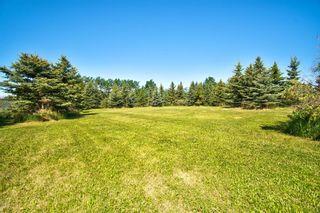 Photo 15: 158 Croxford Estates NE: Airdrie Detached for sale : MLS®# A1120742