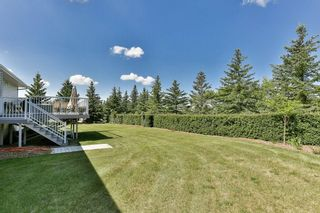 Photo 27: 14221 Big Hill Springs RD in Rural Rocky View County: Rural Rocky View MD House for sale : MLS®# C4190749