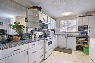 Photo 4: 180 Castledale Way NE in Calgary: Castleridge Detached for sale : MLS®# A1135509