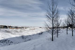 Photo 32: 502 428 Nolan Hill Drive NW in Calgary: Nolan Hill Row/Townhouse for sale : MLS®# A1064360