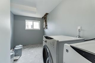 Photo 36: 23 Erin Meadows Court SE in Calgary: Erin Woods Detached for sale : MLS®# A1146245
