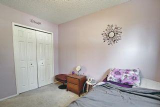 Photo 19: 8602 107 Avenue: Morinville House for sale : MLS®# E4258625