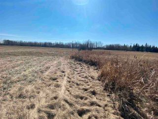 Photo 10: 46, 27118 HWY 18: Rural Westlock County Rural Land/Vacant Lot for sale : MLS®# E4238085